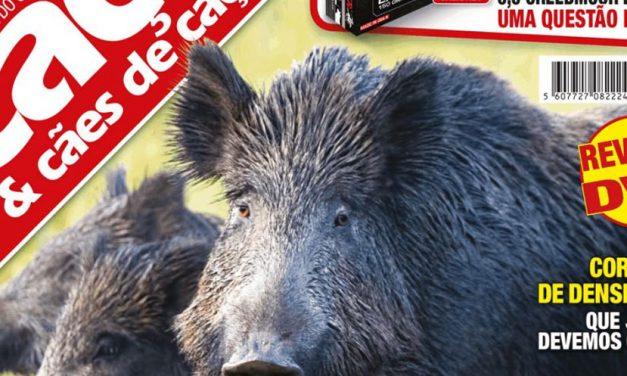 Editorial da Revista Caça & Cães de Caça